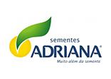 sementes-adriana